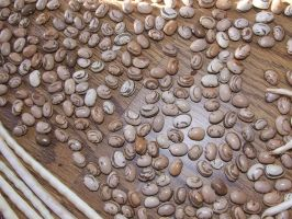 Valena Beans and lots of them 3 by dtf-stock