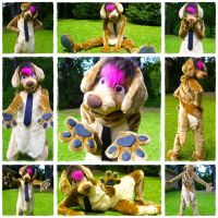 Alex is now a fullsuit by AlexDachshund