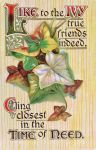 Like to the Ivy True Friends Indeed by Yesterdays-Paper