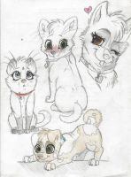 Luk x Tibbles- baby designs by Husky-Heart
