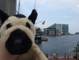 John at the Inner Harbor by Itachislilgirl