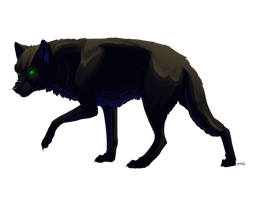 black wolf :.commission.: by Silverbloodwolf98