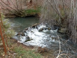 South Hills Creek 11 by the-only-nighthawk