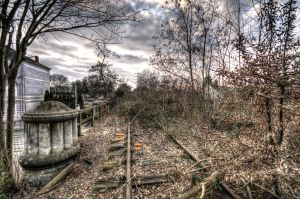 Railway-tree-bridge-Winter-Brown by DornFinn
