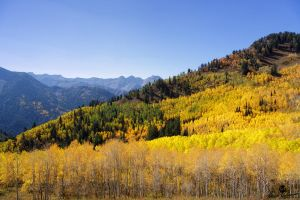 Colors and Autumn Sky's by mjohanson