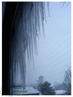 2010 5-6 02 Snow Pictures 00 by lilly-peacecraft