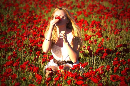 In the poppies by Samantha-meglioli