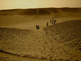 walking in sahara by antonellapistarino