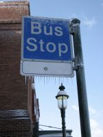 Bus Stop by Lady-with-a-buzzsaw