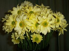 Flowers I by KW-stock