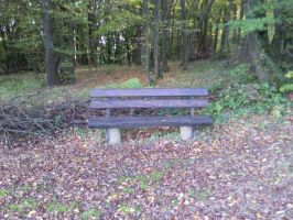 Bench in the Forrest 01 by Fea-Fanuilos-Stock