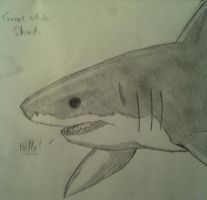 Great White Shark Realism by ToxicSerpent