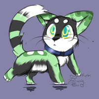 name your price kitten adoptable Closed by Apriifox