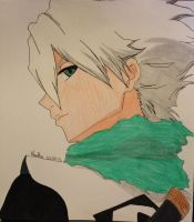 Captain Hutsugaya by martha1101