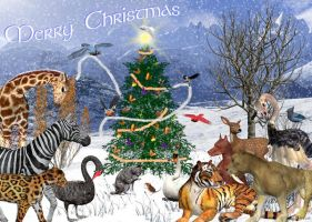 Nature's Christmas by kzinrret