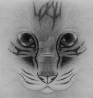 Cat Icon by AWildNamikarp