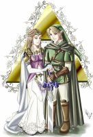 .:ZeLink-Wisdom and Courage:. by Nardhwen