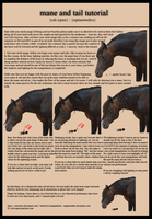 Mane and Tail Tutorial August 2013 by equinestudios