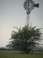 Windmill by kwuus