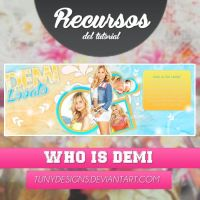 Who is Demi | Recursos by TunyDesigns