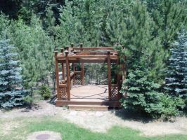 Colorado Trees(5) and deck by futuremd123