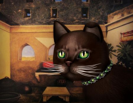 Kitty in an Indian Courtyard by ninokhan