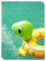 hey mr. turtle by dottydotcom