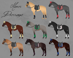 ELS Horse Dressage Equipment - Mares by michelle222
