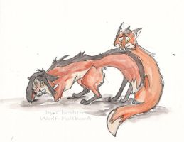 Foxes 3 by CheshireWolf98