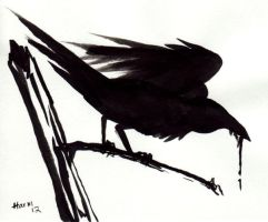 Crow by thrivis