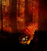 Tiger-close up by Holly6669666