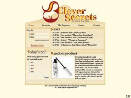 clever secrets website by LH310