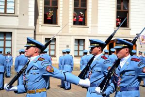The Presidential guard by TheNimster