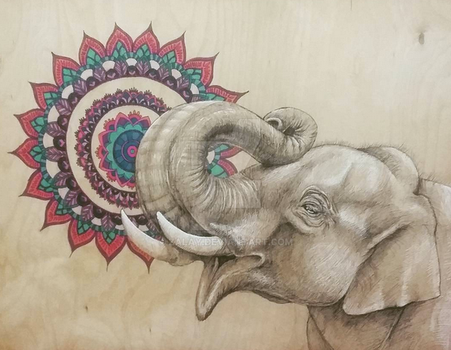 Endangered Species Series Elephant by zalay