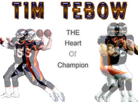 Tim Tebow The Heart Of A Champion by jasonutep