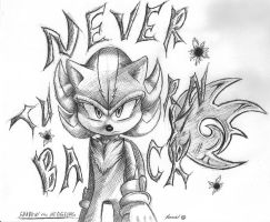 Never Turn Back: Ink Pen Shadow by Super-Sonic-101