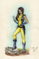 Female Wolverine by mebeme14