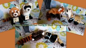 Webkinz signature red panda and Ferret by Vesperwolfy87