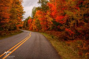 HDR Autumn Road 3 by Nebey