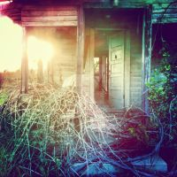 Lovely Decay by Sarahtarium