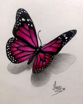 Butterfly by fransiguel