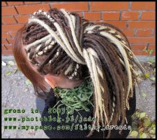 synthetic dreads blonde brown2 by FilthyDreads