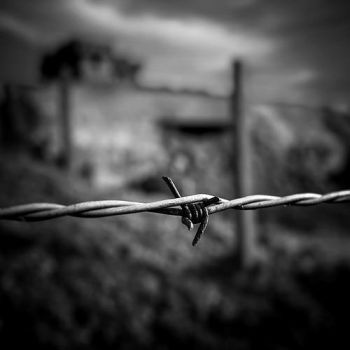 Barbed Wire by Pixydream