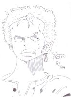 Zoro by SDH by ShadowDoomHunter