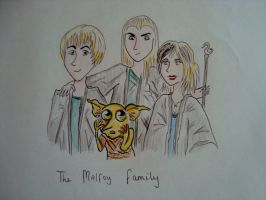 The Malfoy Family by Eveliien