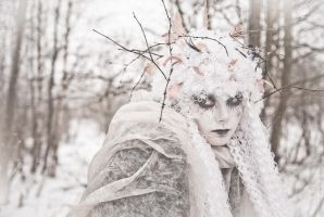 Snow ghost II by vil-painter