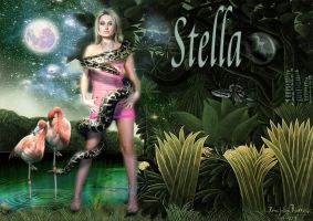 Stella by TACOLIN2010