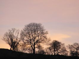 Sunset at winters end by buttercupminiatures