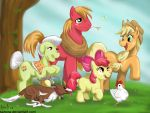 Apple Family or APPLES APPLES APPLES by sanora