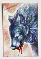 Wolf ACEO by soulwithin465